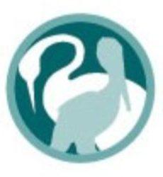 Crane and Pelican